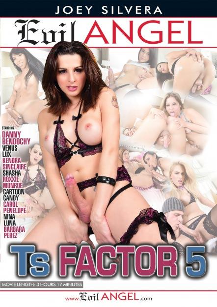 TS Factor #05