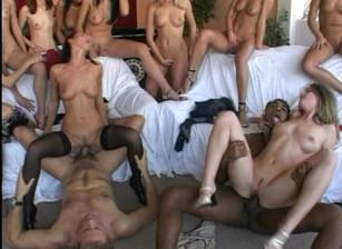 Roccos transexual gang bang — img 4